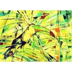Картина на красивата птица Тукан