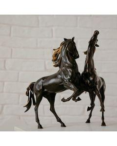 Скулптура на двойка коне, Радост от живота