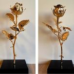 Естествена позлатена роза